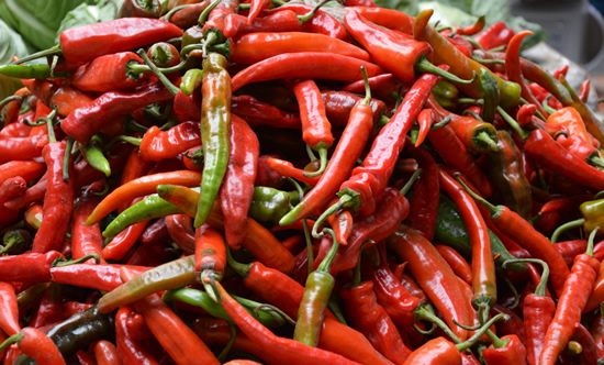 Rote frische Chilli in Bhutan